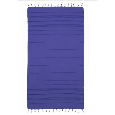 Summer Fun Pestemal Beach Towel Color: Blue
