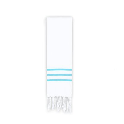 Alara Hand Towel Color: White/Turquoise