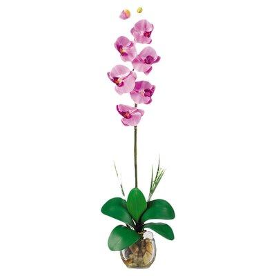 Liquid Illusion Single Phalaenopsis Silk Orchid Flower in Mauve 1104-MA