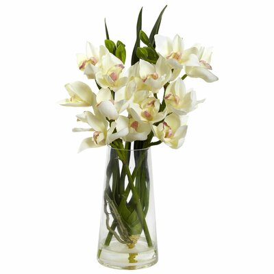 Cymbidium Orchid in Vase