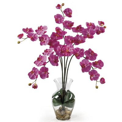 Liquid Illusion Phalaenopsis Silk Orchid Arrangement in Dark Pink 1106-DP