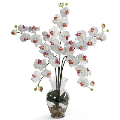 Liquid Illusion Phalaenopsis Silk Orchid Flowers in White 1106-WH