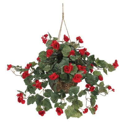 Silk Begonia Hanging Plant in Basket