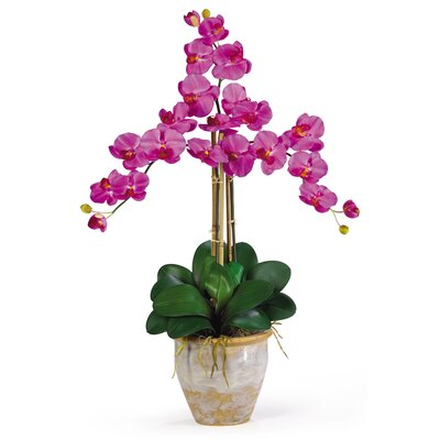 Triple Phalaenopsis Silk Orchid Flowers in Orchid 1017-OR
