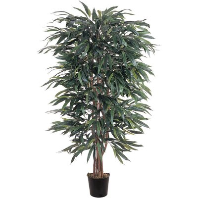 Silk Weeping Ficus Tree in Pot 5018