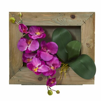 Phalaenopsis Orchid Floral Arrangement in Wooden Picture Frame Flower Color: Purple
