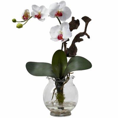 Faux Orchid Arrangement VIII 1277-WH