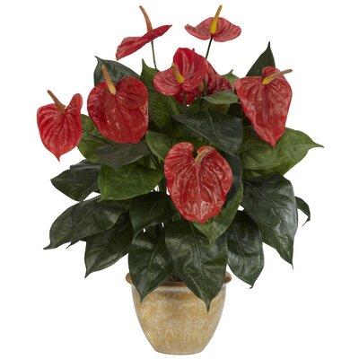 Anthurium Desk Top Plant in Decorative Vase 6665