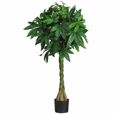 Nearly Natural Braided Money Tree in Pot 5249