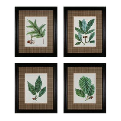 Oak Leaves 4 Piece Framed Graphic Art Set