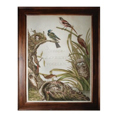 Sanctuary for Birds Framed Painting Print
