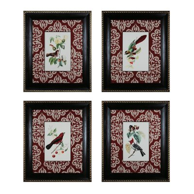Cuvier Exotic Birds 4 Piece Framed Graphic Art Set