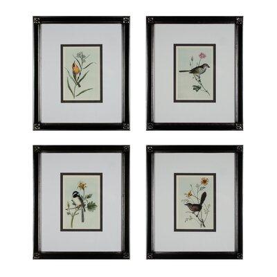 Birds On A Branch 4 Piece Framed Graphic Art Set