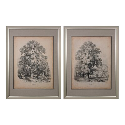 Elm and Sycamore 2 Piece Framed Graphic Art Set
