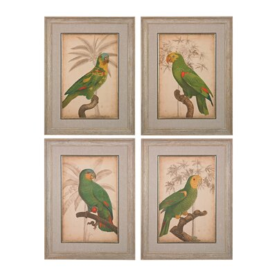Parrot And Palm 4 Piece Framed Graphic Art Set