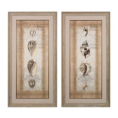 Cartouche and Shells 2 Piece Framed Graphic Art Set