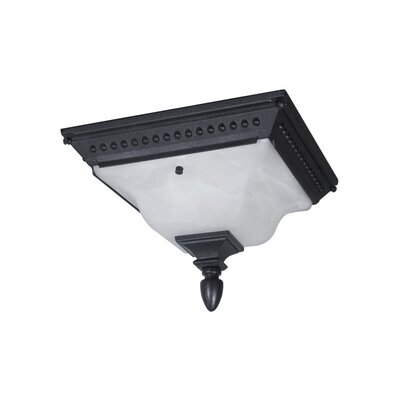 Abington 2-Light Flush Mount Finish: Black