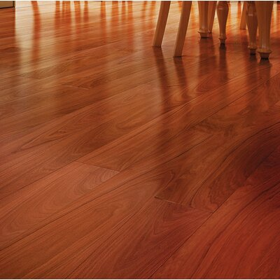 5-1/2 Solid Brazilian Walnut Hardwood Flooring in Black