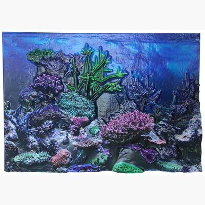 Coral Reef 3D Background Size: 12 H x 24 W