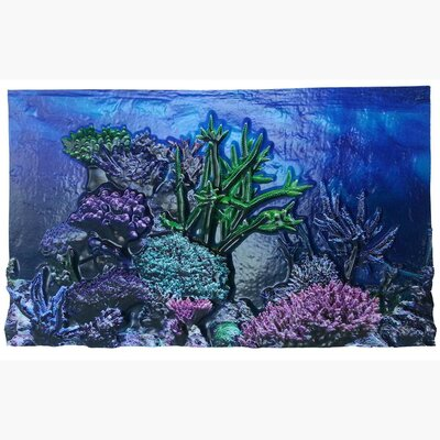 Coral Reef 3D Background Size: 10 H x 20 W