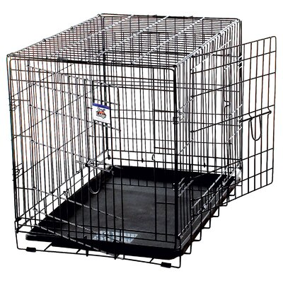Pet Lodge Double Door Wire Crate in Black Size: Large - 36 L x 24 W x 27 H