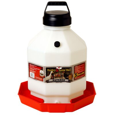 Plastic Poultry Waterer in Red Size: 5 Gallon