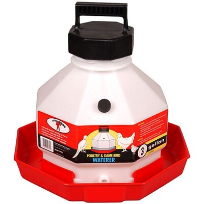 Plastic Poultry Waterer in Red Size: 3 Gallon