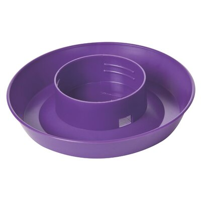 Screw On 1 Quart Poultry Water Base (Set of 5) Color: Purple
