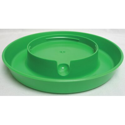Screw-On Poultry Water Base - 1 Gallon (Set of 3) Color: Lime Green