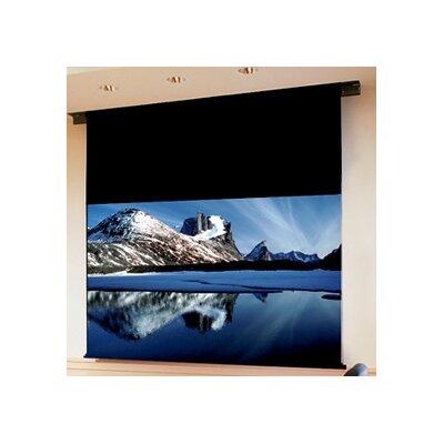Ambassador Grey Electric Projection Screen Viewing Area: 9 H x 12 W