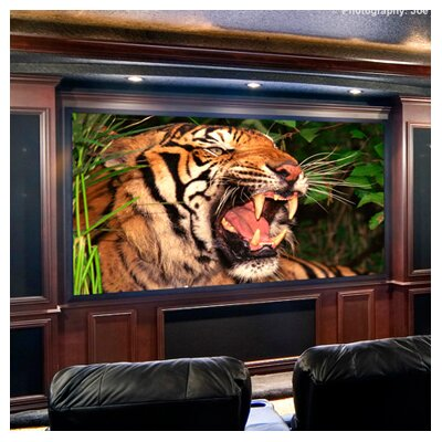 ShadowBox Clarion Projection Screen Surface Finish: Matt White, Size/Format: 123, 16:10 Format