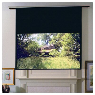 Image Ultimate Access Series E Contrast Radiant Electric Projection Screen Size/Format: 123 diagonal / 16:10