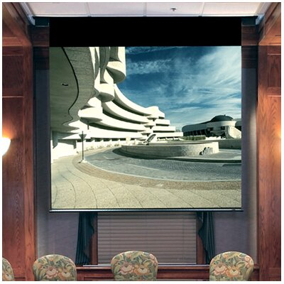 See Envoy Contrast Grey Electric Projection Screen with Quiet Motor Size / Format: 110 diagonal / 16:9 More Images