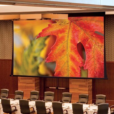 Paragon/Series V White Electric Projection Screen Viewing Area: 132 H x 264 W