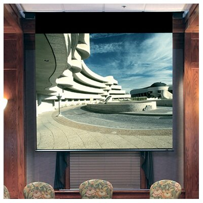 Envoy Grey Electric Projection Screen Viewing Area: 10' H x 10' W