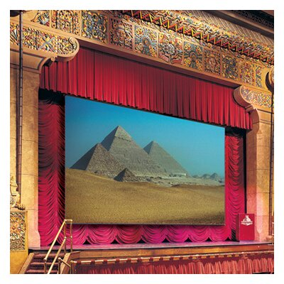 Paragon Matte White Electric Projection Screen Viewing Area: 307