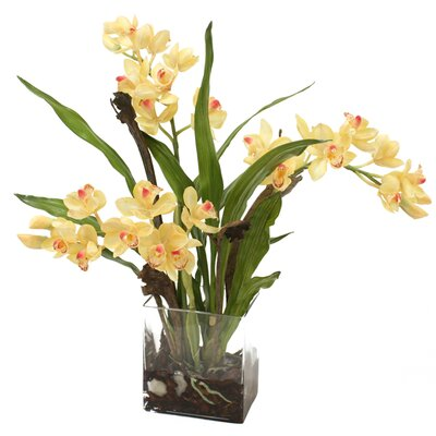 Waterlook Silk Orchid Plant in Rectangular Vase 16107