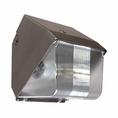 1-Light Outdoor Metal Halide Wall Light in Architectural Bronze