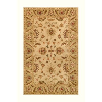 Golden Beige/Light Green Area Rug Rug Size: 5 x 8