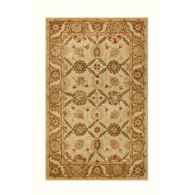 Golden Beige/Gold Area Rug Rug Size: 36 x 56
