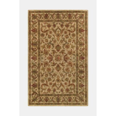 Imperial Beige Area Rug Rug Size: 36 x 56