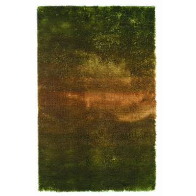 Jewel Green/Rust Rug Rug Size: 8 x 11