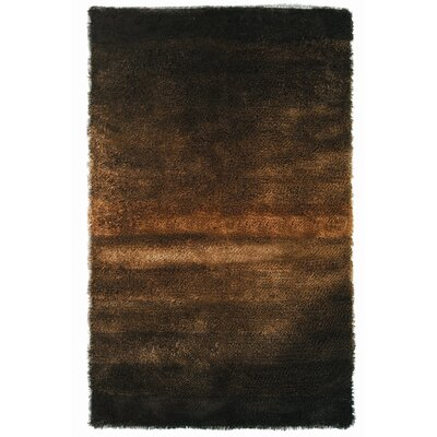Jewel Black/Brown Rug Rug Size: 4 x 6