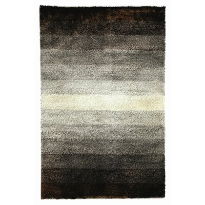 Jewel Brown/White Rug Rug Size: 4 x 6