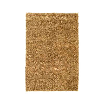 Sheen Brown Rug Rug Size: 4' x 6'