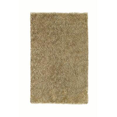 Sheen Beige Rug Rug Size: 8' x 11'
