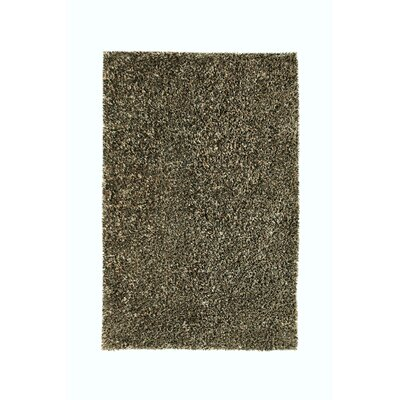 Sheen Black Rug Rug Size: 8 x 11