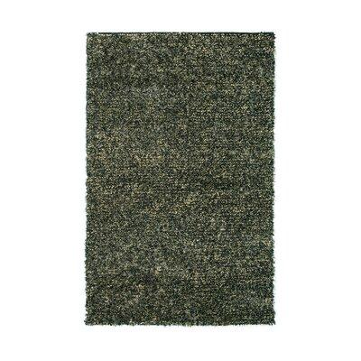 Marina Charcoal Area Rug Rug Size: 8 x 11