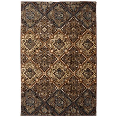 Dryden Tundra Ornamental Tundra Rug Rug Size: Rectangle 53 x 710