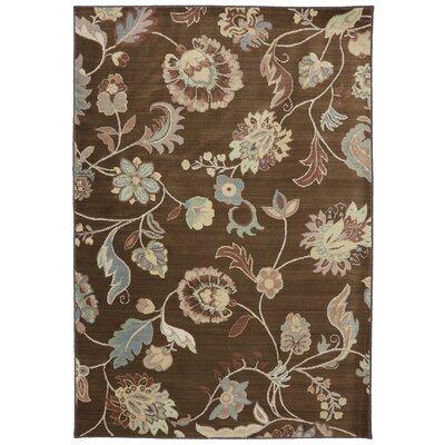 Serenity Bison Floral Sol Star Rug Rug Size: 8 x 11